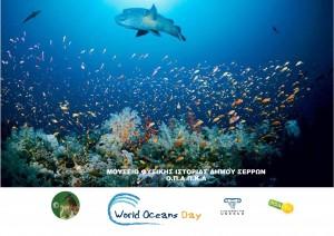 okean day 15